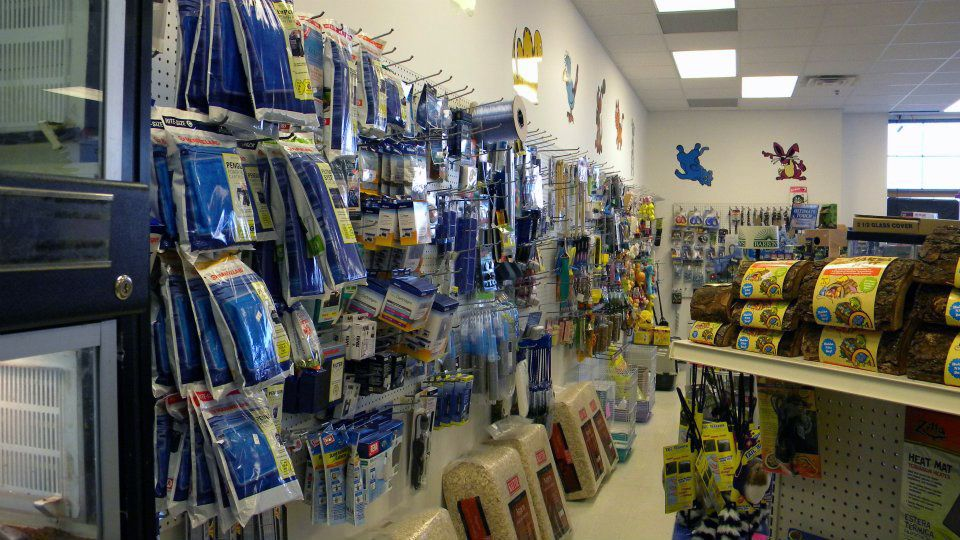 Various Pet Supplies in Store